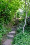 Αρχαία σκαλοπάτια Στοκ εικόνες με δικαίωμα ελεύθερης χρήσης