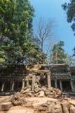 Αρχαία στοά του καταπληκτικού ναού TA Prohm που εισβάλλεται με τα δέντρα Οι μυστήριες καταστροφές του TA Prohm μεταξύ του τροπικο Στοκ Εικόνα