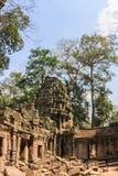 Αρχαία στοά του καταπληκτικού ναού TA Prohm που εισβάλλεται με τα δέντρα Οι μυστήριες καταστροφές του TA Prohm μεταξύ του τροπικο στοκ φωτογραφία