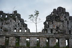 Αρχαία των Μάγια περιοχή Uxmal, Μεξικό Στοκ φωτογραφία με δικαίωμα ελεύθερης χρήσης