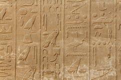 Αρχαία hieroglyphs της Αιγύπτου Στοκ Εικόνα