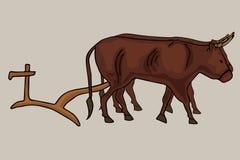Αρχαίες άροτρο και ομάδα βοδιών διανυσματική απεικόνιση