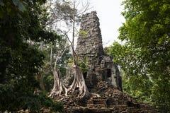 Αρχαίες καταστροφές του ναού Preah Palilay σε Angkor Wat σύνθετο, Καμπότζη Κατεδαφισμένος ινδός ναός με τα δέντρα στοκ φωτογραφία με δικαίωμα ελεύθερης χρήσης