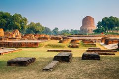 Αρχαίες καταστροφές Stupa Sarnath Dhamekh στο Varanasi, Ινδία στοκ εικόνα