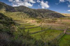 Αρχαίες καταστροφές Tipon σε Cusco Περού στοκ εικόνες με δικαίωμα ελεύθερης χρήσης