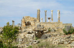 Αρχαίες πόλης καταστροφές, αψίδα και στήλες Volubilis Στοκ φωτογραφία με δικαίωμα ελεύθερης χρήσης