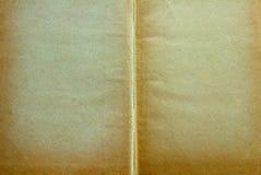 αρχαίες σελίδες Στοκ Εικόνες