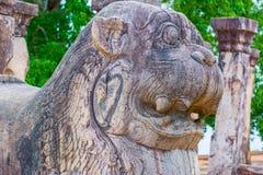 Αρχαίες στήλες γρανίτη Polonnaruwa Στοκ Εικόνες