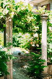 αρχαίες στήλες ελληνικά Πάρκο Milocer εδαφών, κοντά σε Sveti Stefan Στοκ φωτογραφία με δικαίωμα ελεύθερης χρήσης