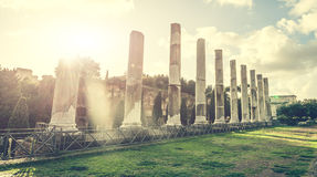 Αρχαίες στήλες κοντά στο Coliseum Στοκ φωτογραφία με δικαίωμα ελεύθερης χρήσης