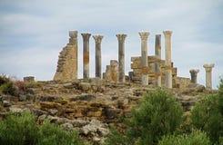 Αρχαίες στήλες πόλης ναών Στοκ Εικόνες