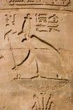 αρχαίος αιγυπτιακός γύπα Στοκ εικόνα με δικαίωμα ελεύθερης χρήσης