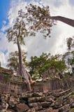 Αρχαίος βουδιστικός khmer ναός σε Angkor Wat σύνθετο Στοκ εικόνα με δικαίωμα ελεύθερης χρήσης