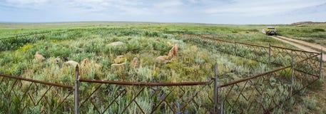 Αρχαίος ενταφιασμός Tengrian στο έδαφος του αρχαιολογικού μνημείου terekty-Aulie Στοκ εικόνα με δικαίωμα ελεύθερης χρήσης