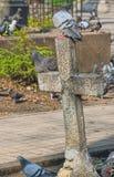 Αρχαίος επιτάφιος σταυρός Στοκ φωτογραφία με δικαίωμα ελεύθερης χρήσης