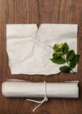 Αρχαίος κύλινδρος με την αναδρομική σύσταση εγγράφου και πράσινο φύλλο για το υπόβαθρο Στοκ Εικόνες