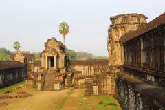 Αρχαίος ναός Angkor Wat ζουγκλών ανατολής, Καμπότζη Στοκ Εικόνες