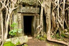 Αρχαίος ναός Angkor Wat, Καμπότζη Στοκ Φωτογραφίες