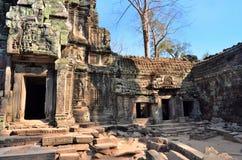 Αρχαίος ναός Angkor Wat Καμπότζη TA Prohm Στοκ εικόνα με δικαίωμα ελεύθερης χρήσης