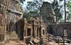 Αρχαίος ναός Angkor Wat Καμπότζη TA Prohm Στοκ Εικόνα