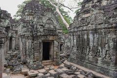 Αρχαίος ναός Preah Khan σε Angkor η Καμπότζη συγκεντρώνει siem Στοκ Εικόνες