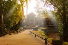 Αρχαίος ναός TA Prohm, Angkor, Καμπότζη Στοκ εικόνες με δικαίωμα ελεύθερης χρήσης