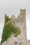 Αρχαίος πέτρινος πύργος στην Ιρλανδία Στοκ Φωτογραφίες