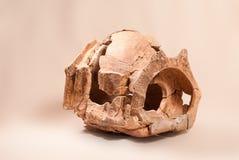 Αρχαίος πολιτισμός Cucuteni αγγειοπλαστικής στοκ φωτογραφία