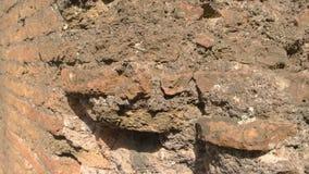 Αρχαίος στενός επάνω τοίχων φιλμ μικρού μήκους
