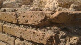 Αρχαίος τοίχος και φως του ήλιου απόθεμα βίντεο