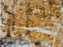 Αρχαίος τοίχος πετρών του χαρακτηριστικού ιταλικού αγροτικού σπιτιού στοκ εικόνες