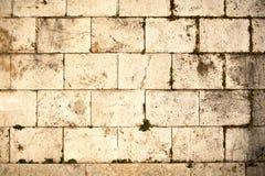 αρχαίος τοίχος Στοκ Φωτογραφίες