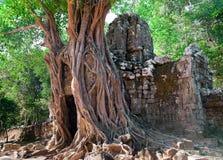αρχαίος khan ναός preah Στοκ Εικόνες