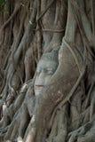 Αρχαίο άγαλμα του Βούδα σε Ayutthaya Στοκ Φωτογραφίες