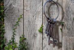Αρχαίο βασικό δαχτυλίδι, αγροτικός κήπος Στοκ Εικόνες