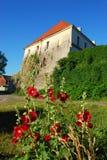 Αρχαίο κτήριο φρουρίων αρχιτεκτονικής Στοκ εικόνες με δικαίωμα ελεύθερης χρήσης
