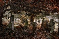 Αρχαίο νεκροταφείο με πολλές ταφόπετρες με τα χαμηλωμένα χρώματα Στοκ Φωτογραφίες