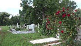 Αρχαίο νεκροταφείο στη Βάρνα bulblet 4K φιλμ μικρού μήκους