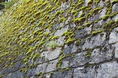 Αρχαίο πεζοδρόμιο φιαγμένο από γκρίζες πέτρες στοκ φωτογραφία