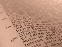 Αρχαίο ποίημα Στοκ εικόνες με δικαίωμα ελεύθερης χρήσης
