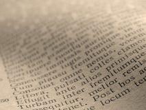 αρχαίο ποίημα Στοκ Εικόνα