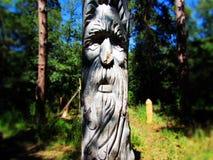 Αρχαίο idol2 Στοκ Εικόνες