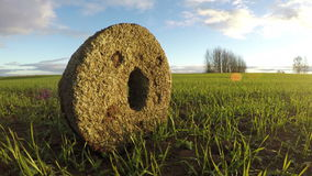 Αρχαίο millstone στον τομέα συγκομιδών, χρονικό σφάλμα 4K απόθεμα βίντεο