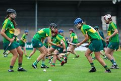 All-Ireland Premier Junior Championship Semi-Final between county Clare and county Kerry