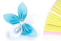 Αρχείο και λουλούδι εγγράφου Στοκ Εικόνες