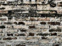 Αρχική ερμηνεία της σύστασης τοίχων φιαγμένης από τούβλα Στοκ Εικόνα