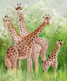 Αρχική ζωγραφική όμορφα Giraffes στο εθνικό πάρκο Masai Mara Στοκ φωτογραφία με δικαίωμα ελεύθερης χρήσης