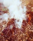 Αρχική πυρκαγιά Στοκ Φωτογραφίες