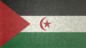 Αρχική τρισδιάστατη εικόνα της αραβικής δημοκρατικής σημαίας Δημοκρατίας Sahrawi Απεικόνιση αποθεμάτων