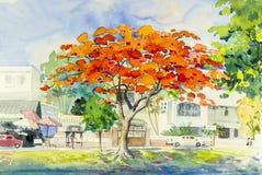 Αρχικός ζωηρόχρωμος τοπίων του δέντρου και της συγκίνησης λουλουδιών peacock απεικόνιση αποθεμάτων